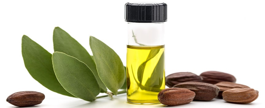 روغن جوجوبا یکی از چربی های نزدیک به چربی پوست انسان است و منبع خوبی برای مرطوب کردن پوست است